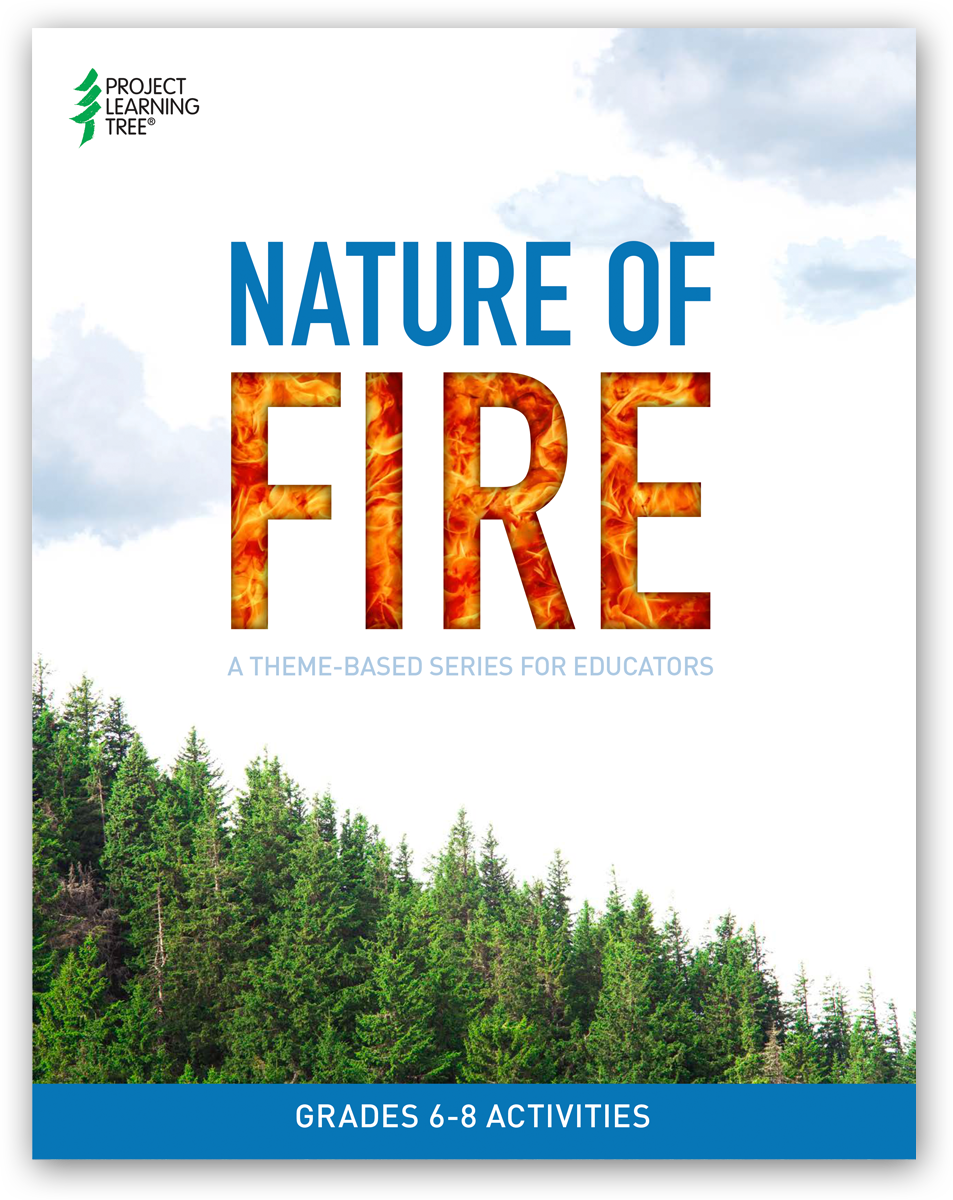 Nature of Fire